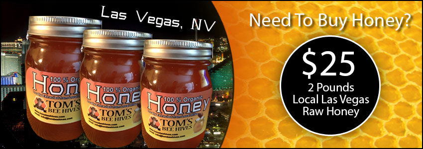 Local Las Vegas Raw Honey